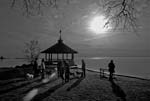Day For Night - The Dog Walkers - 7252 - Photograph by H. David Stein