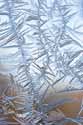 Frigid Fractal - 463_6326 - Photograph by H. David Stein